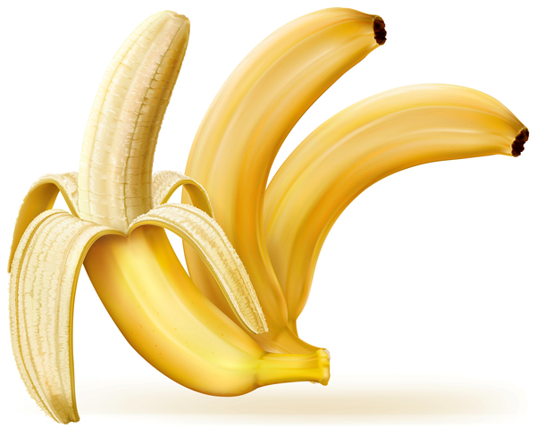 03uhoserfoasv10 Whole and peeled bananas vector