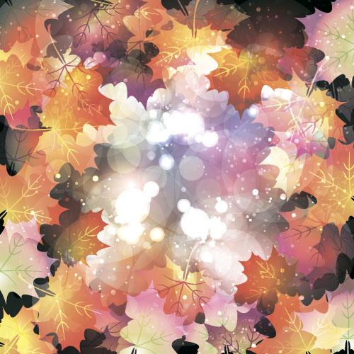 shiny leaves bokeh autumn