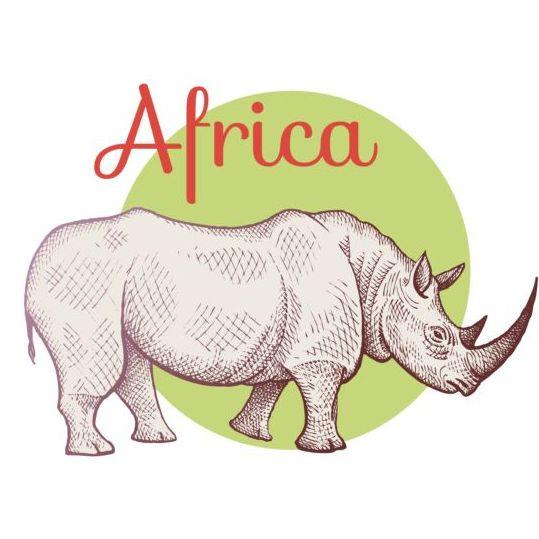 Rhinoceros africa